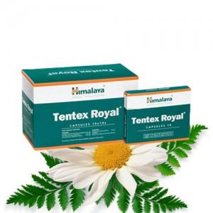 tentex-royal