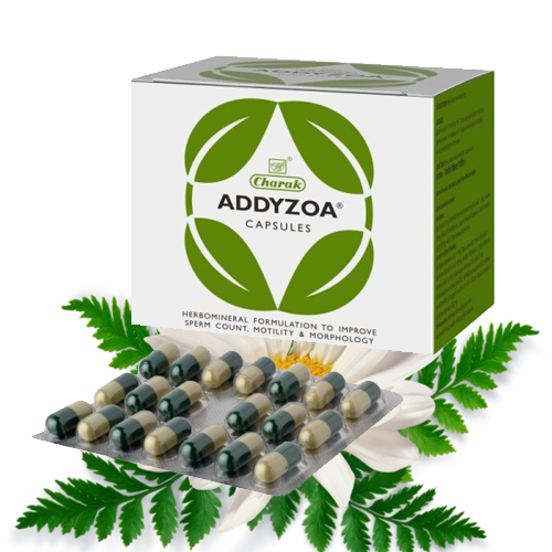 Addyzoa capsule to Prevent Male infertility | How to Increase Sperm Motility and Sperm Count
